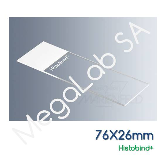 Αντικειμενοφόρες πλάκες, θετικά φορτισμένες, 76x26mm, τροχισμένες, HistoBond+